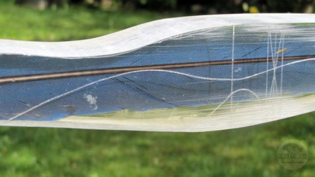Mind-Factor Focus - unverbautes Griffstück mit einer blau-gelben Papageienfeder_4